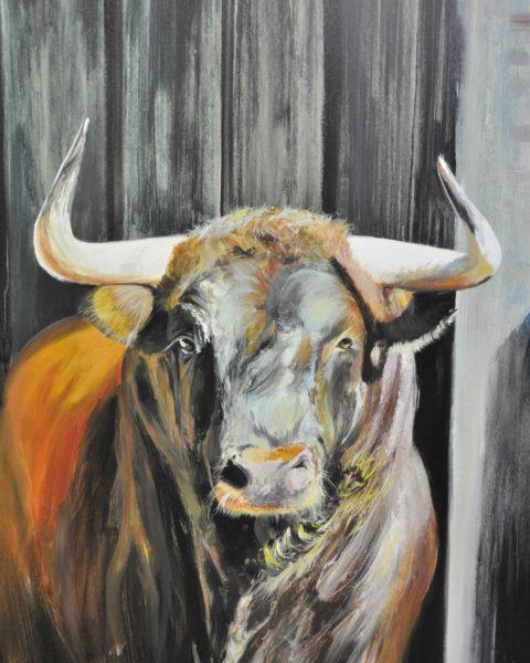 Toro. 100 x 81cm.